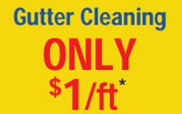 Gutter Cleaning - $1/ft